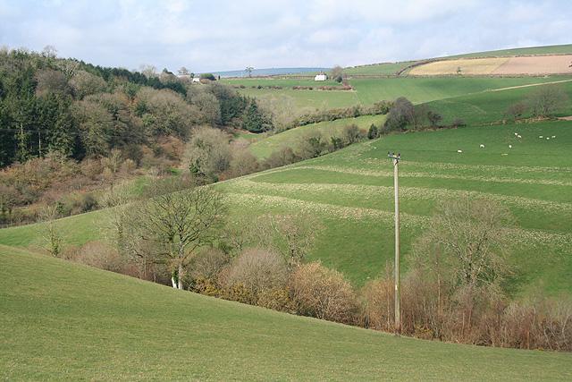 Molland: towards West Molland Barton