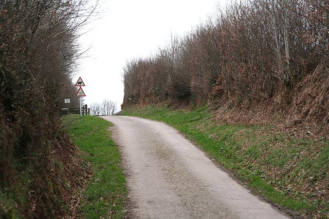 Molland: lane to Twitchen