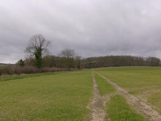 Footpath to Seamer Great Wood, near Oswaldkirk