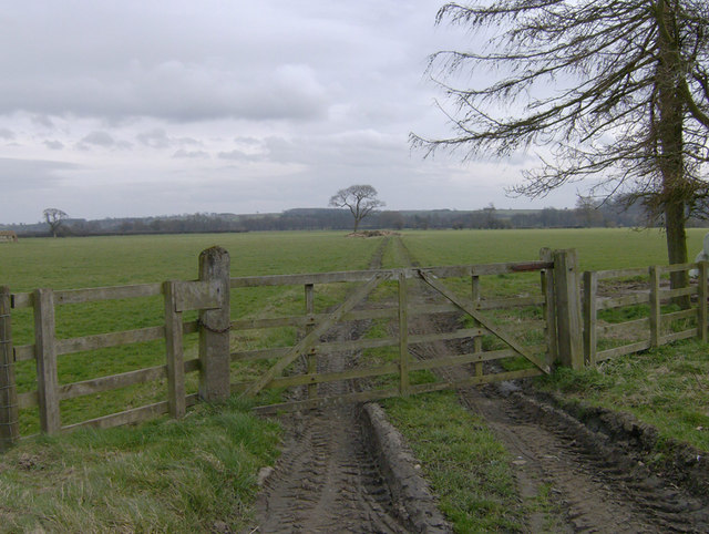 Barely discernible course of old railway at Harome Siding
