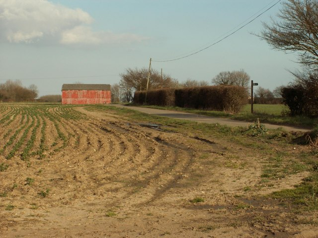 Mary's Lane, seen across a ploughed field