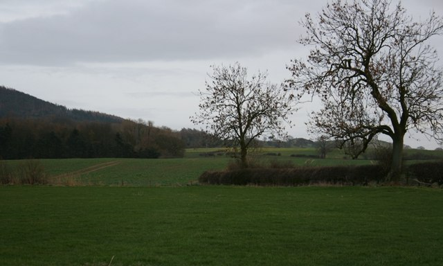 Fields South of Boville Park