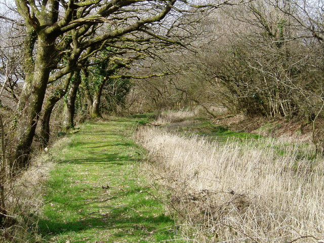 The Bude Canal near Lana.