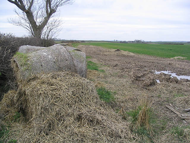 Old bales in a pasture field