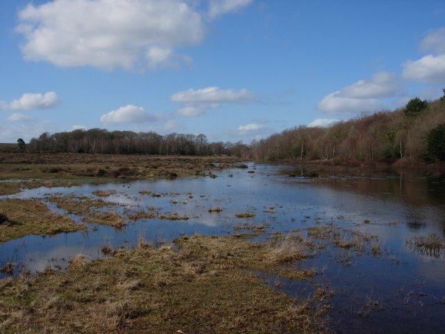 Floods on Yew Tree Heath