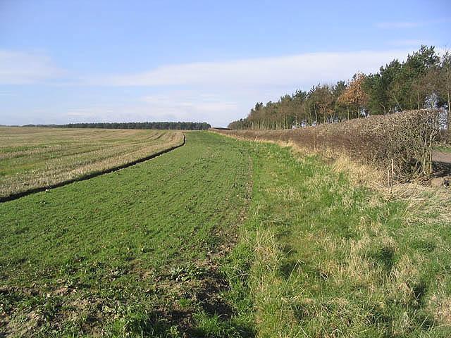 Farmland near Littlehoughton