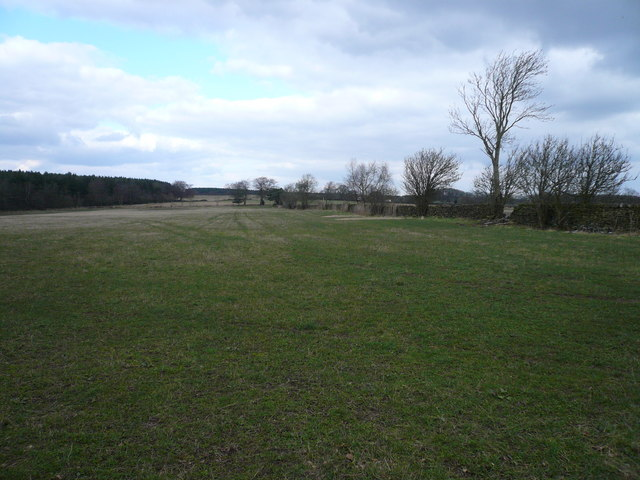 View from field adjoining Whitesprings Plantation