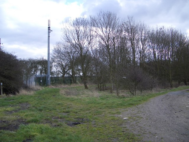 Communications Masts South of Yelden