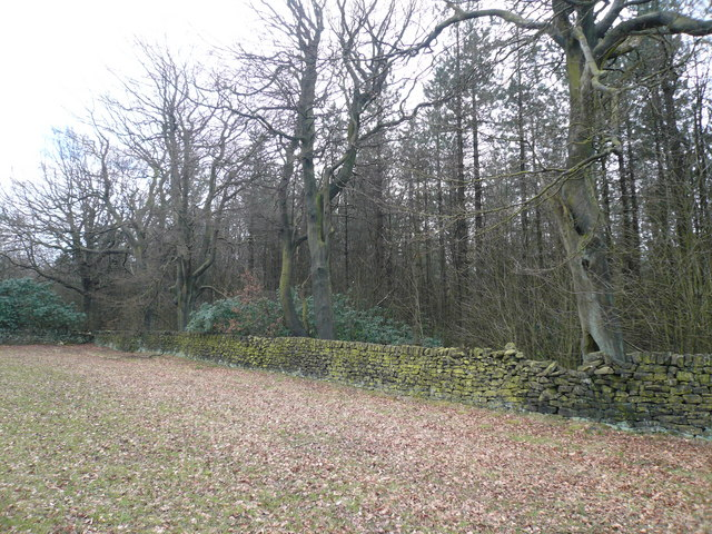 Whitesprings Plantation Boundary