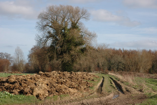 Muck bury and track, Monkland