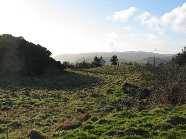 Countryside by Kilbride, Southend.