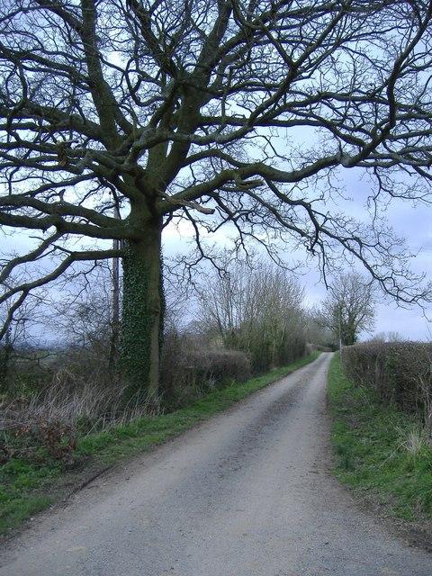Road to Nibley Green