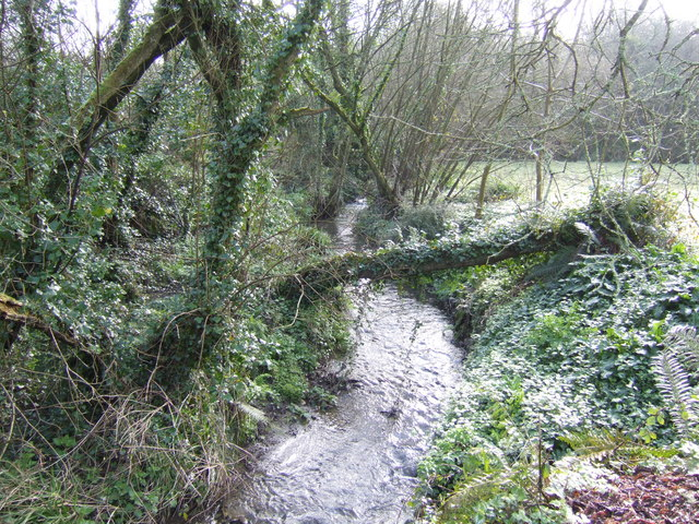 Fast-flowing brook