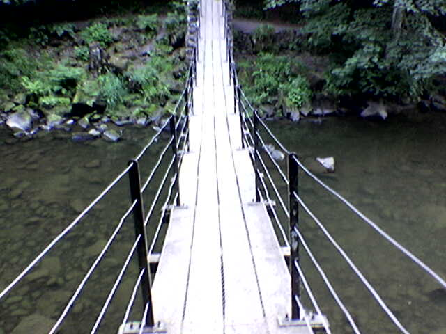 Suspension Bridge At Allen Banks
