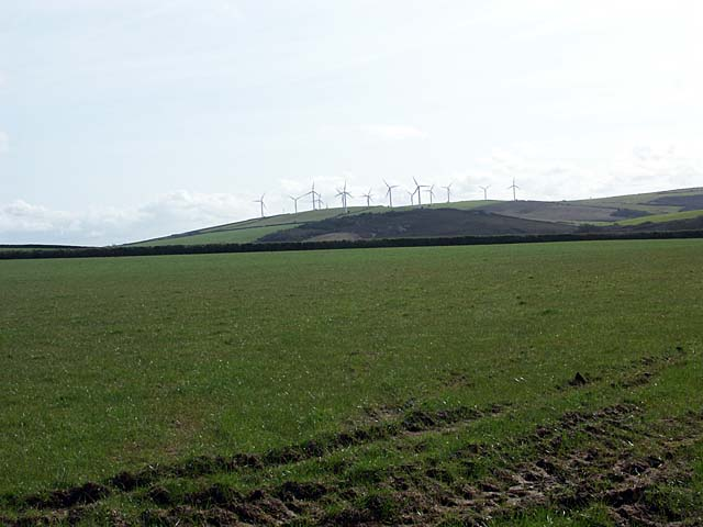A grass field with Carland Cross Wind Farm on the skyline.