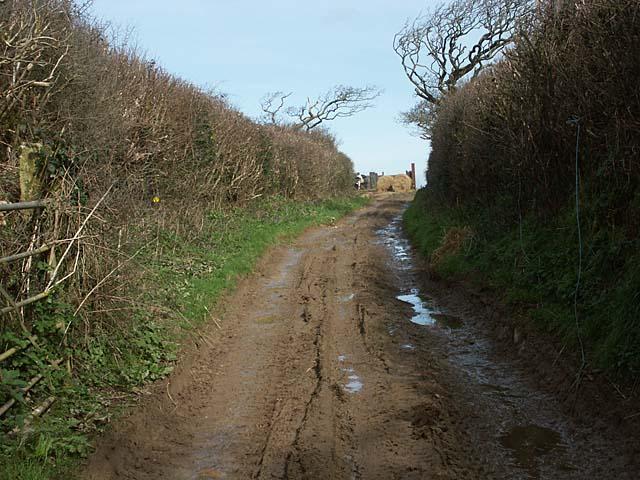 A muddy lane