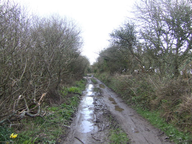 Bridleway east