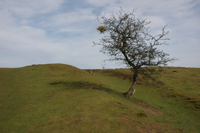The Shire Ditch on Hangman's Hill