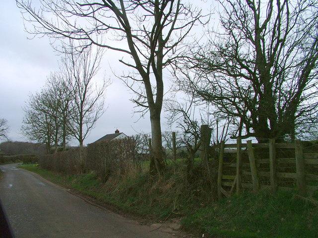Road near Cote House