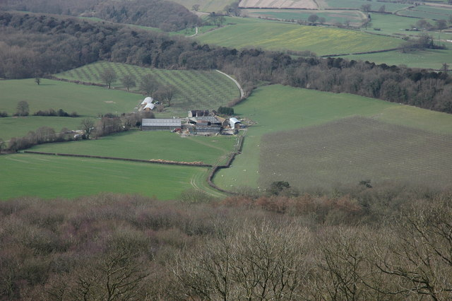 Netherton Farm viewed from Millennium Hill