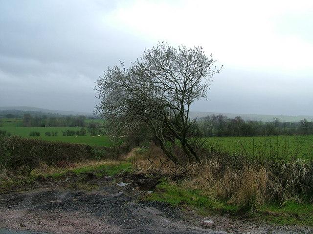 Stockber Lane