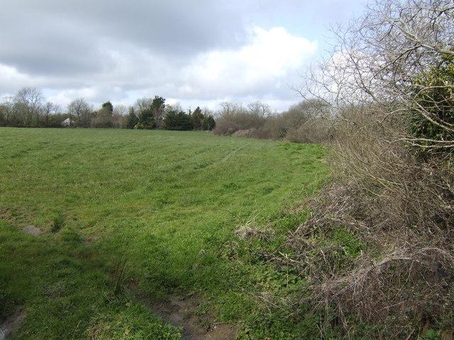 Field north of Main Dale Common