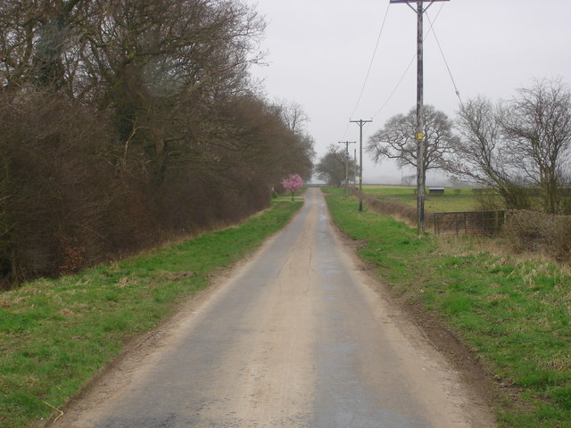 Country lane west of Yafforth.