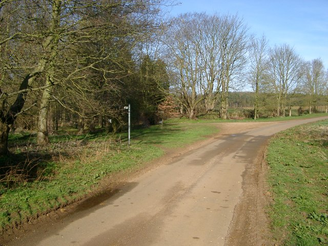 Road/Footpath/Track Junction at Wheelabout Wood