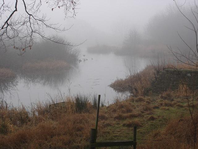 Fish Pond Plantation