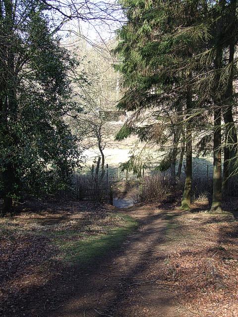 Footpath in woods near Aspley Heath & Woburn