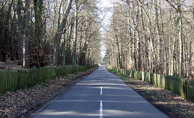 Fenced lane