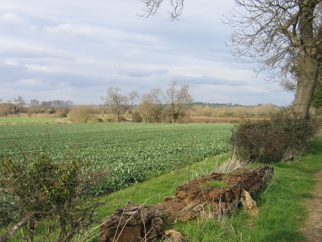 Farm fields by the river Welland