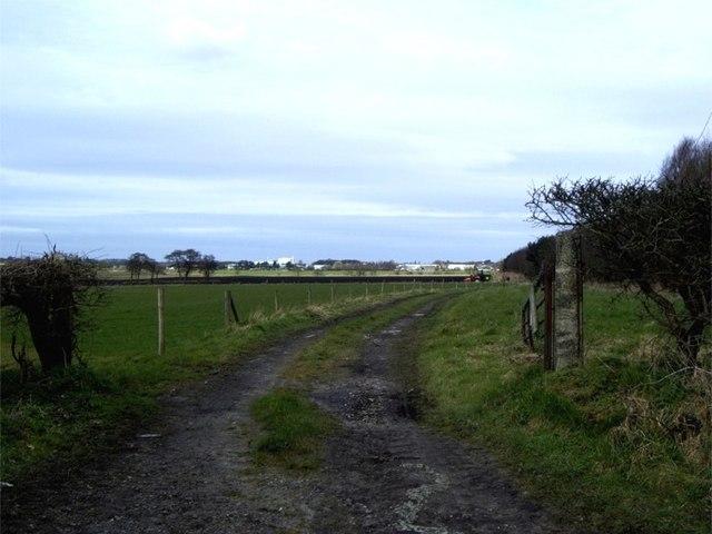 Track off Crank Road, Crank