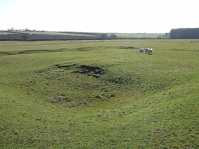 Ancient Moat & Sheep