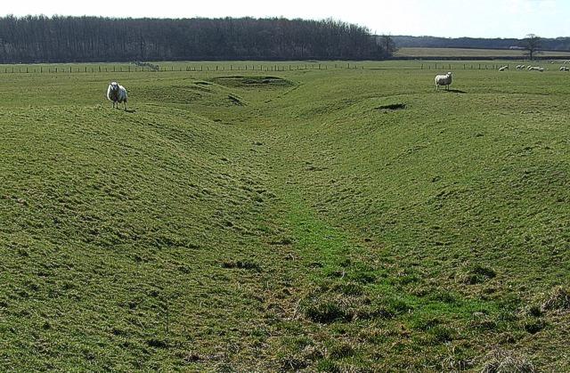 Sheep guard the moat