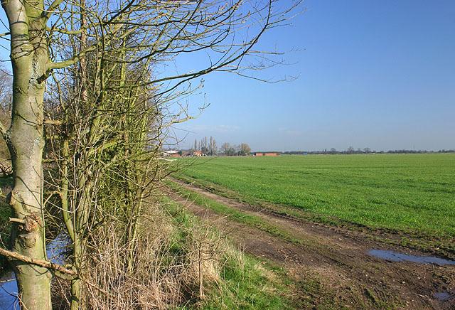 North Moor