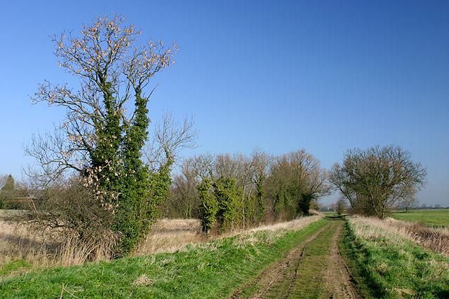 Near North Moor