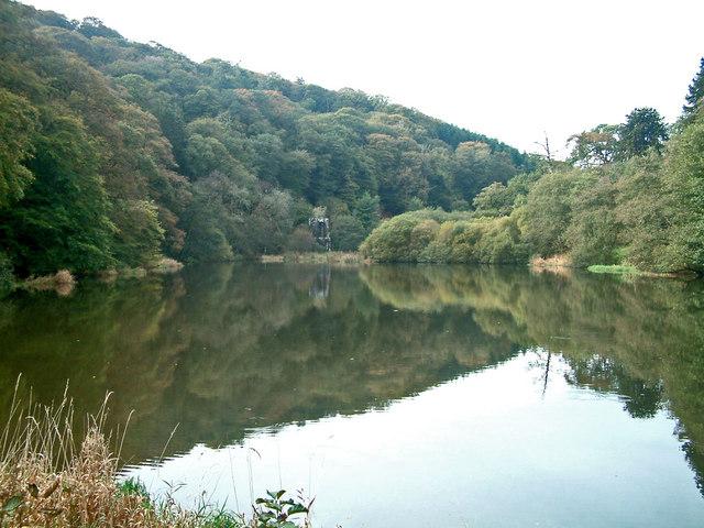 Lake at Arlington