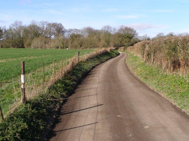 Silkstead Lane between Silkstead and Silkstead Manor Farm