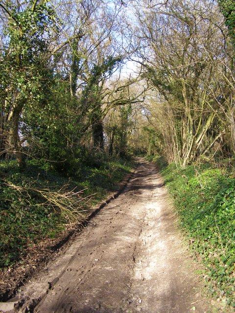 Silkstead Lane, Yew Hill