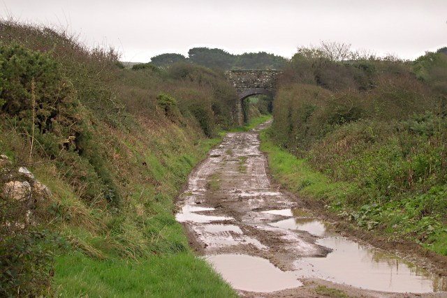 Track underneath the old railway line.