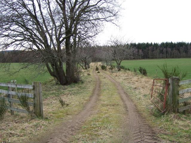 Track to Glassel Estate