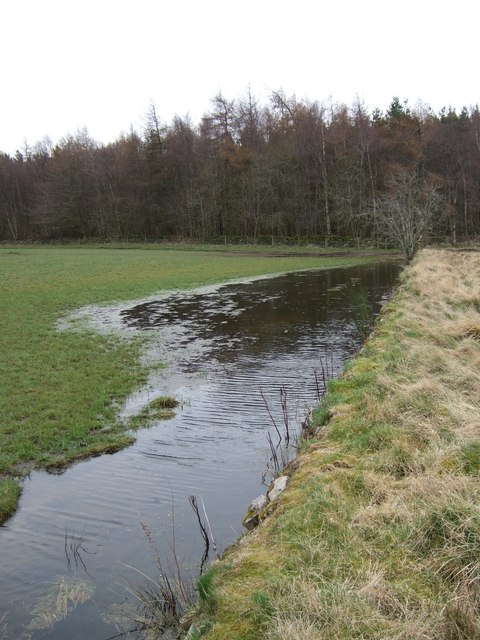 Drainage ditch overflow