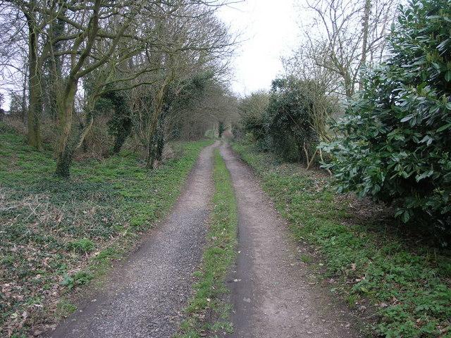 Bridleway to Alder Moor