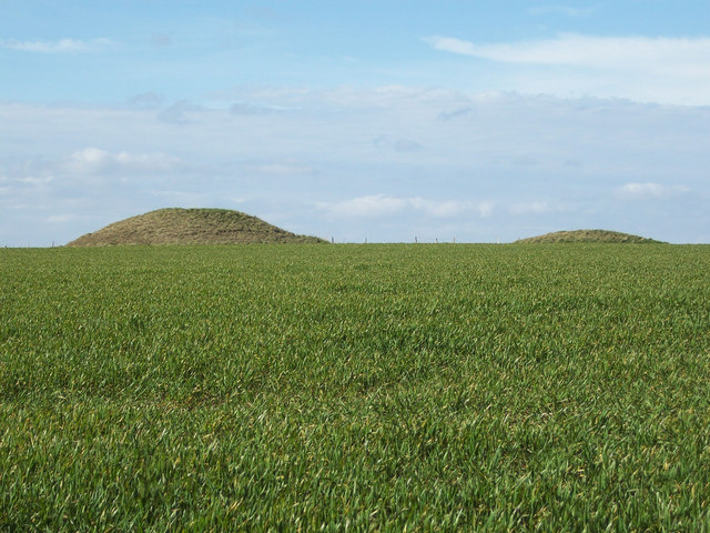 Round Barrows beside the Ackling Dyke
