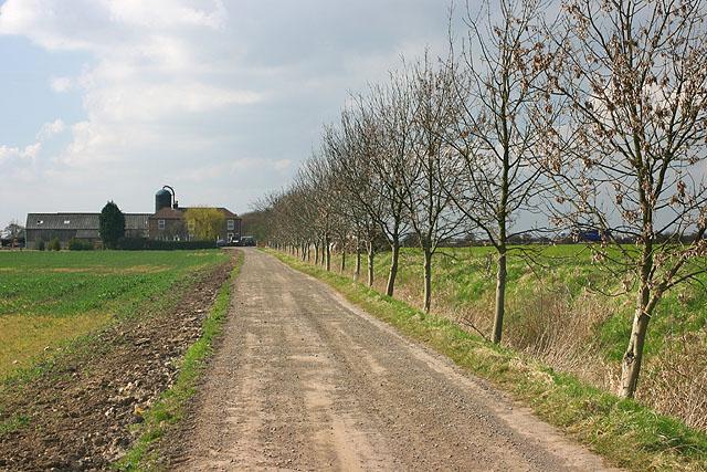 Farm track to Dikes Marsh