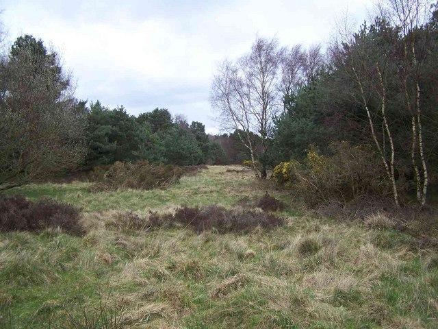 Near Site of RAF Hednesford