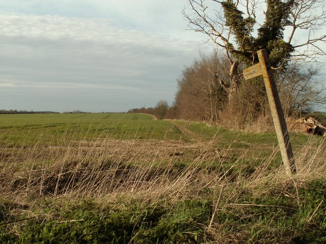 Footpath to Holbrook Wood