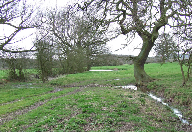 Meadows/Grazing Land , Lutley, Staffordshire Way