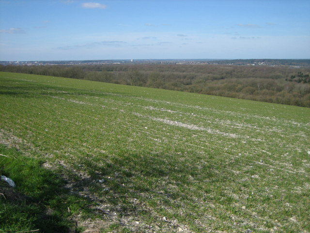 View From the Hogs Back - Facing North West